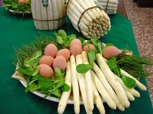 asparago-di-bassano